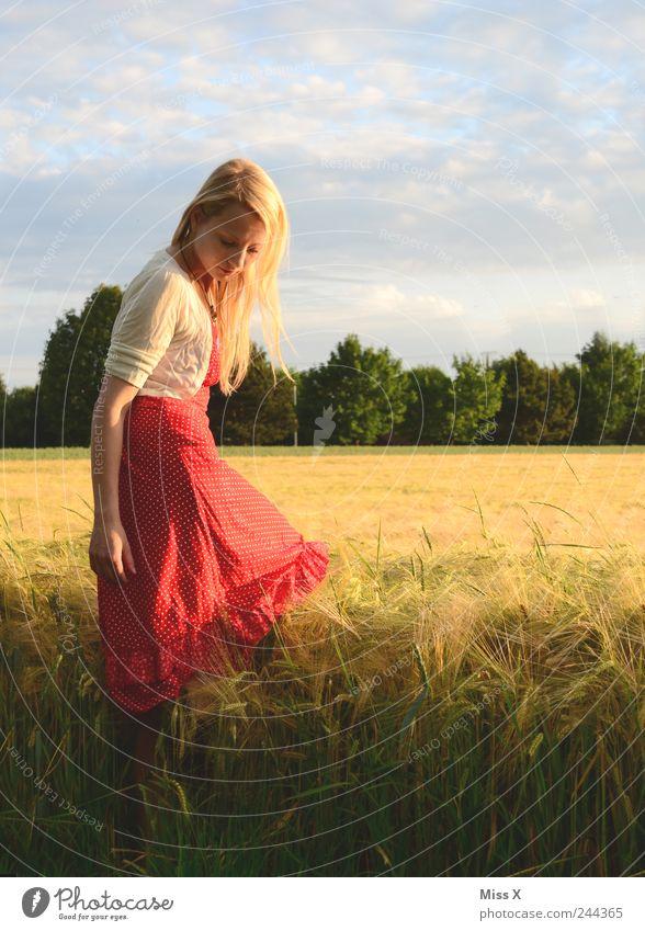 im Korn Mensch Jugendliche schön rot Sommer ruhig feminin Gras Erwachsene Stimmung Feld blond Romantik Kleid Warmherzigkeit Idylle