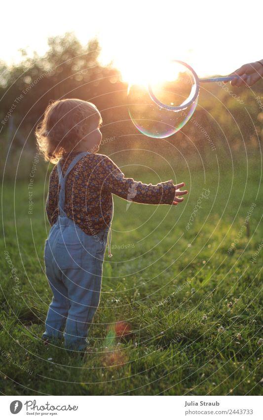 Seifenblase Kleinkind Wiese Sonnenuntergang Mensch Natur Sommer schön grün Mädchen feminin Sträucher Schönes Wetter beobachten berühren Neugier nah brünett