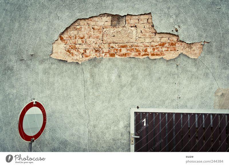 Karpfenteich alt Tier Wand Mauer lustig grau Fassade dreckig trist Schilder & Markierungen authentisch kaputt Vergänglichkeit Ziffern & Zahlen Fisch trocken
