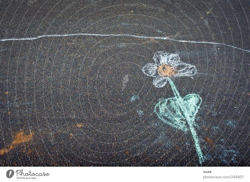 Blume am Straßenrand Pflanze Freude Blatt Spielen Blüte grau Kunst Umwelt Platz Freizeit & Hobby Klima Bild Asphalt Kindheit