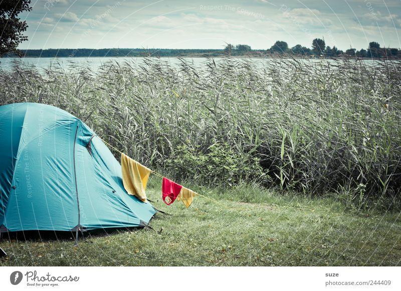 Zelten Himmel Natur blau grün Ferien & Urlaub & Reisen Sommer Wolken Landschaft Umwelt Wiese See Horizont Wind Freizeit & Hobby authentisch Ausflug
