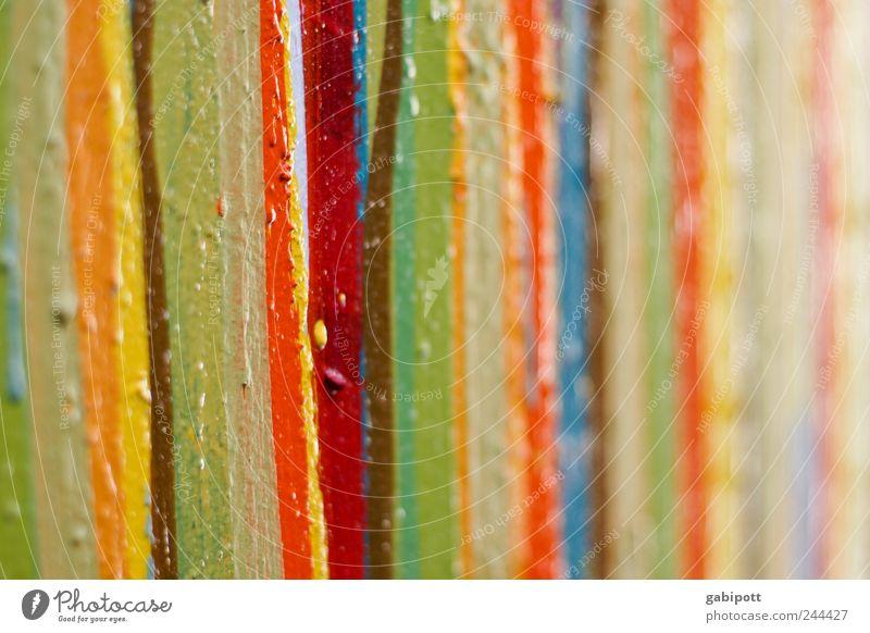Ein wenig Farbe an diesem grauen Montag blau grün rot gelb Farbe Linie braun Kunst Zufriedenheit Design Fröhlichkeit Bild Freundlichkeit Lebensfreude positiv Maler