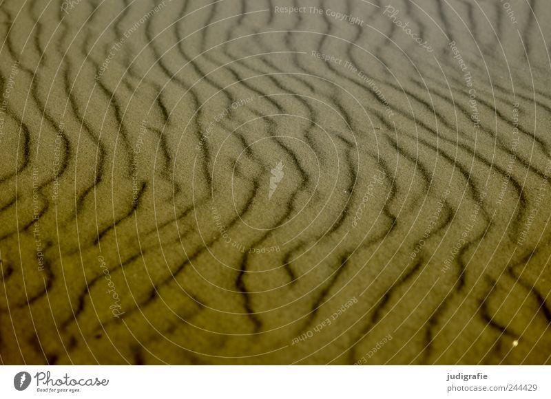 Strandformen Natur Meer Sand Wärme Landschaft Küste Umwelt weich natürlich Ostsee Wellenform