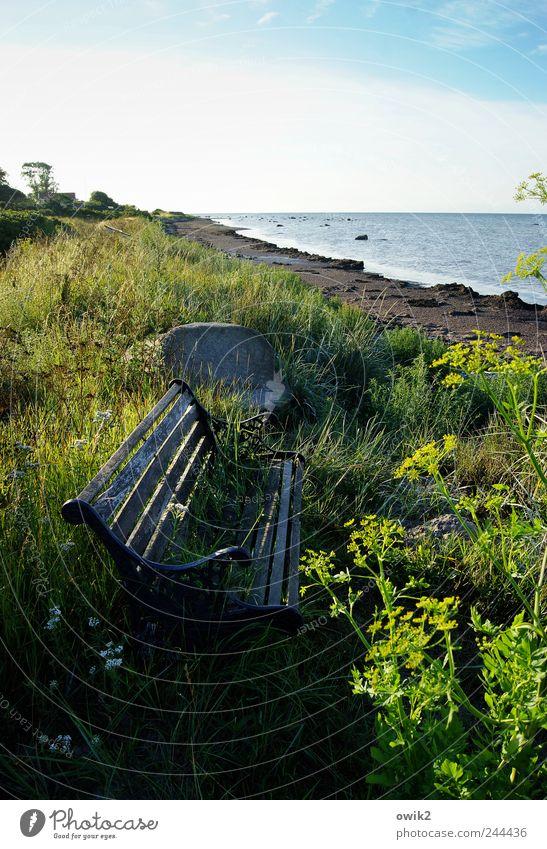 Meermorgen Himmel Natur alt Wasser Pflanze Sommer Ferien & Urlaub & Reisen Meer Ferne Erholung Umwelt Freiheit Landschaft Gras Küste Wetter