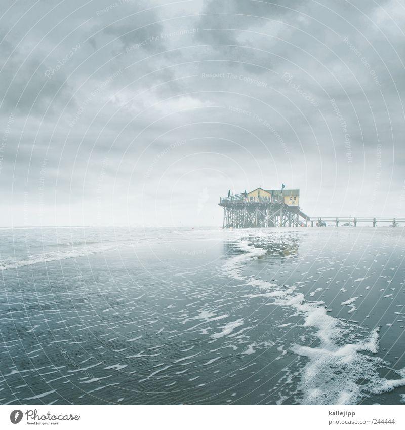 tausendfüßler Natur Wasser Himmel Strand Meer Wolken Haus Landschaft Küste Wellen Umwelt Nebel Tourismus Sturm Café Steg