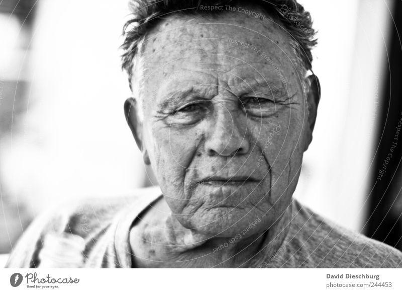 Das Leben lesbar Mensch Mann alt weiß schwarz Senior Haare & Frisuren Kopf Haut authentisch einzeln Hautfalten 60 und älter Gelassenheit Männlicher Senior
