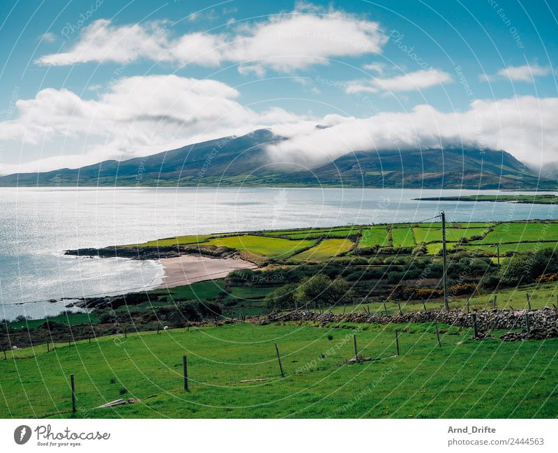 Brandon Point - Irland Ferien & Urlaub & Reisen Tourismus Ausflug Abenteuer Ferne Freiheit Sommer Sommerurlaub Natur Landschaft Himmel Wolken Frühling