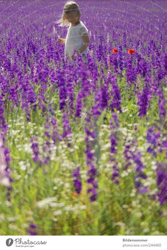 Komplementärschönheiten Mensch Natur weiß grün rot Ferien & Urlaub & Reisen Pflanze Mädchen Sommer Blume Erholung Wiese Garten träumen Kindheit Feld