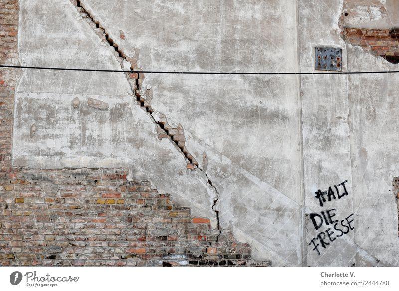 Riss | UT Dresden Stadt Mauer Wand Backstein Putzfassade Stein Schriftzeichen Graffiti alt frech kaputt rebellisch trashig wild grau rot schwarz weiß gereizt