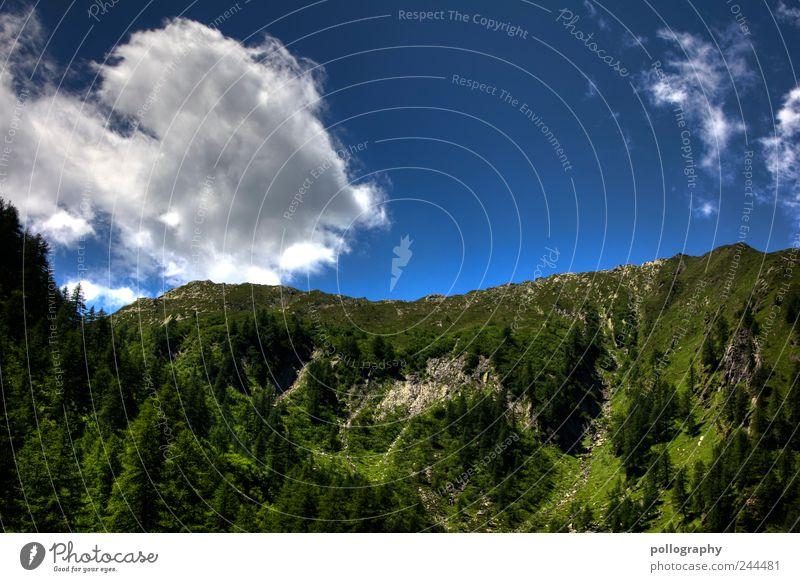wolkige Aussichten Natur Himmel weiß Baum grün blau Sommer Ferien & Urlaub & Reisen Wald Erholung Wiese Berge u. Gebirge Gras Holz Stein Landschaft