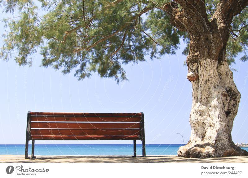 Ein Platz zum träumen blau Wasser Ferien & Urlaub & Reisen Baum Pflanze Meer ruhig Erholung Ferne Landschaft Freiheit Küste braun Insel Ausflug Pause