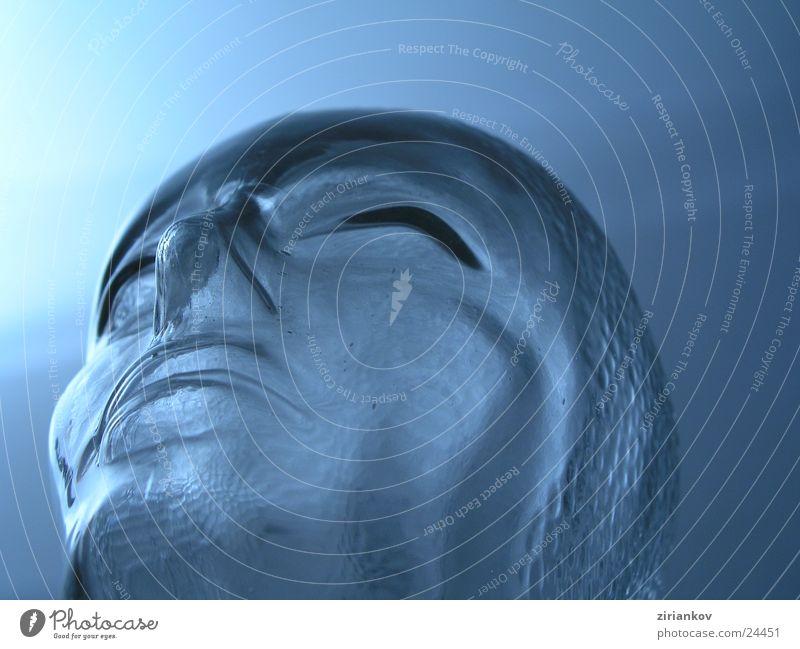 Denker blau kalt Kopf Denken Glas Häusliches Leben Kopfhörer