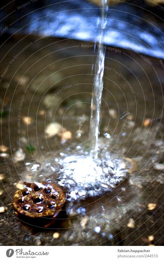 Wasserbrunnen Trinkwasser harmonisch Erholung Park Garten Flüssigkeit frisch Leben Durst Bewegung Innsbruck Brunnen sprudelnd Farbfoto Außenaufnahme Nahaufnahme