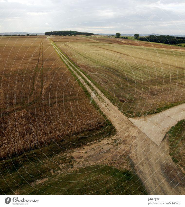 kreuz und quer Natur grün Ferne Straße Wege & Pfade Landschaft Erde braun Feld Umwelt Erde Horizont Hügel Ernte Verkehrswege Symmetrie