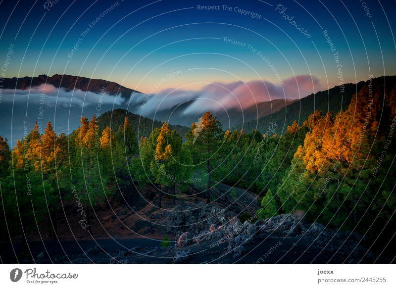 Welle Natur Landschaft Luft Himmel Wolken Sommer Schönes Wetter Blume Berge u. Gebirge groß oben Geschwindigkeit mehrfarbig Idylle Farbfoto Außenaufnahme