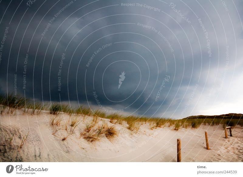 Wahrscheinlichkeitsprognose, 99% Umwelt Natur Sand Himmel Wolken Wetter schlechtes Wetter Gras Küste bedrohlich dunkel bizarr Endzeitstimmung Energie skurril