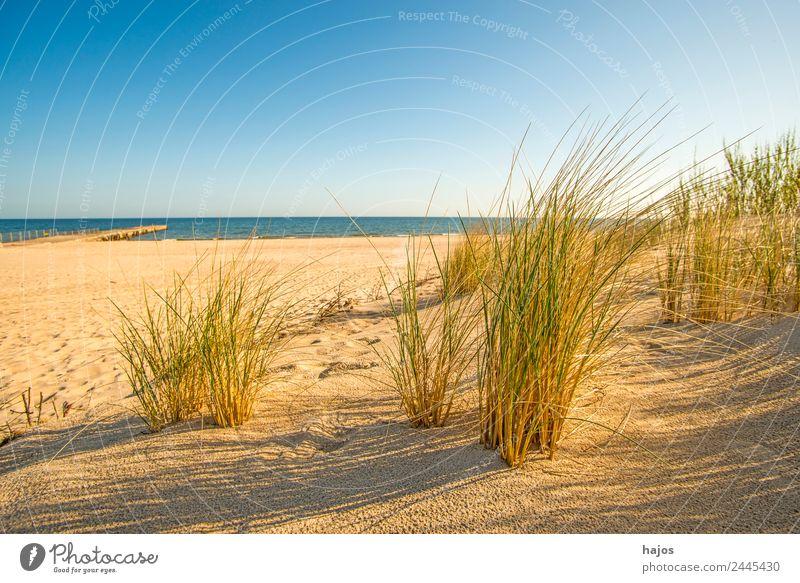 Strand an der polnischen Ostseeküste Sand maritim Idylle Tourismus Strandhafe Meer blau Himmel Sandstrand Polen weit leer einsam Menschenleer Sommer Sonne