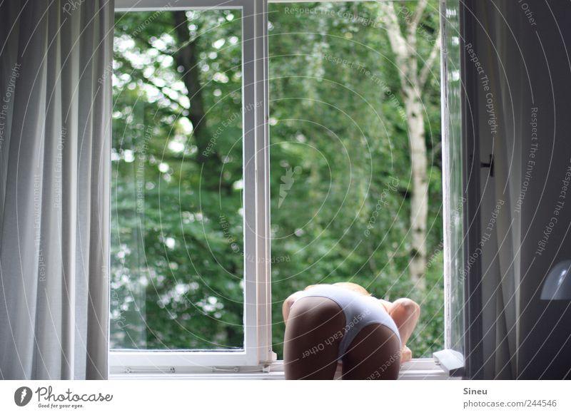 Fenster mit Frau Frau Mensch grün weiß Baum feminin sprechen Fenster Erwachsene Beine Lampe warten stehen Gesäß beobachten Neugier