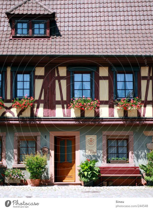 Fenster mit Haus alt schön Blume ruhig Erholung Tür Zufriedenheit Wohnung Fassade Sicherheit Häusliches Leben Bank Schutz Dorf