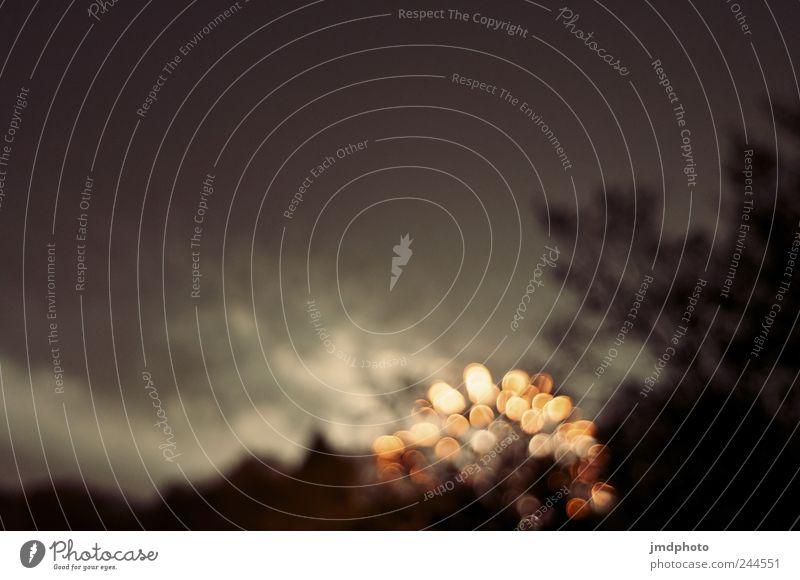 feuerwerk Nachtleben Feste & Feiern Silvester u. Neujahr Jahrmarkt Feuer Wolkenloser Himmel Nachthimmel Baum glänzend leuchten dunkel fantastisch verrückt