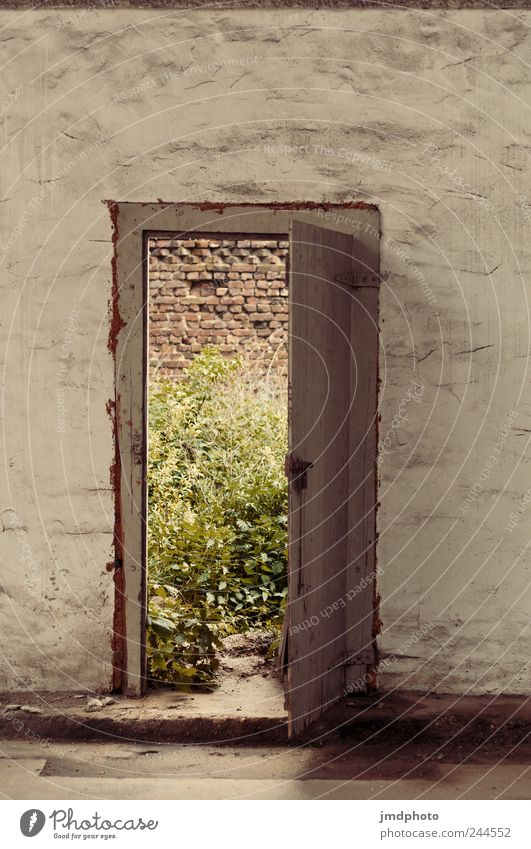 raus ruhig Haus Einsamkeit Wand Gras Mauer träumen Traurigkeit Tür kaputt Sträucher natürlich Vergänglichkeit wild Neugier Gelassenheit