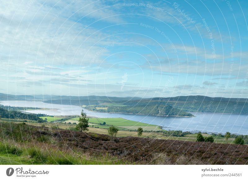 Schottland I Natur Landschaft Wasser Himmel Wolken Sommer Klima Klimawandel Schönes Wetter Baum Feld Hügel Berge u. Gebirge Küste Bucht Meer Idylle Umwelt