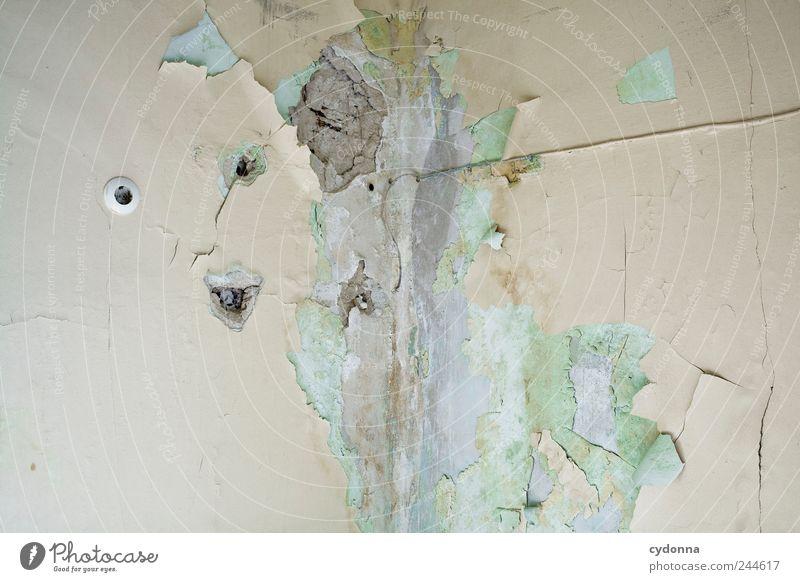 In die Ecke getrieben ruhig Wand Stil Mauer Zeit Design ästhetisch gefährlich Lifestyle kaputt Häusliches Leben Wandel & Veränderung Vergänglichkeit entdecken
