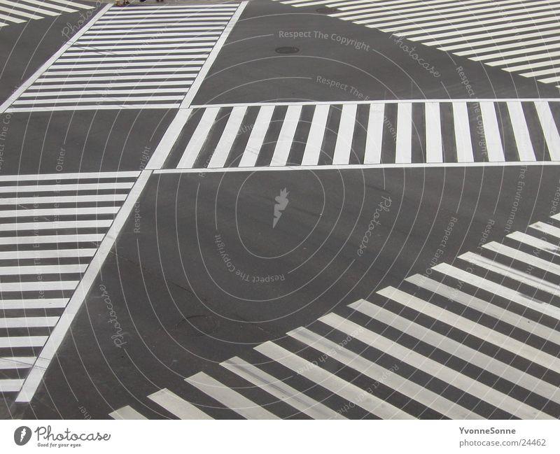 Zebra Stadt Einsamkeit Straße Verkehr Asphalt Überqueren Zebrastreifen