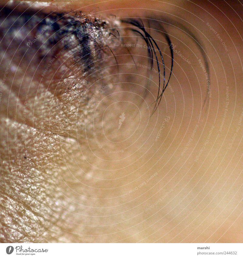 ein Wimpernschlag Mensch Haut Auge braun Wimperntusche Kajal Hautfalten Detailaufnahme Nahaufnahme Schminke Zwinkern Unschärfe Makroaufnahme Hautfarbe Farbfoto