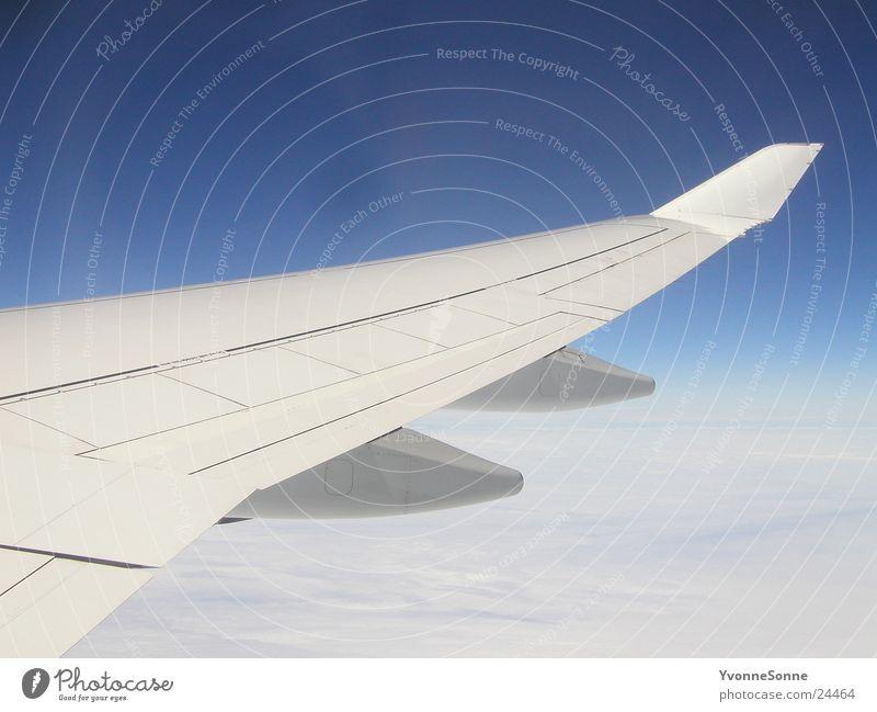 über den Wolken Himmel weiß blau Flugzeug Luftverkehr Tragfläche
