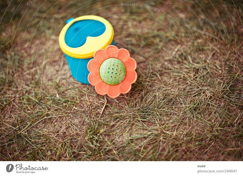 Gregor Gießi Kindheit Umwelt Natur Schönes Wetter Gras Garten Wiese Spielzeug Gießkanne Kunststoff niedlich trocken Wachstum Farbfoto mehrfarbig Außenaufnahme