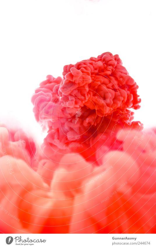 Panta rhei Wasser Rauch ästhetisch außergewöhnlich Flüssigkeit gigantisch Unendlichkeit schön rosa rot beweglich Bewegung bizarr chaotisch Energie Farbe