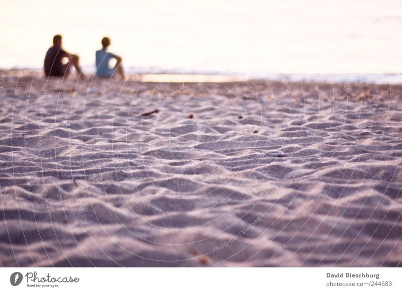 Du mit mir und ich mit dir Mensch Frau Mann Jugendliche Sommer Meer Strand ruhig Erwachsene Erholung Liebe Landschaft Leben Küste Glück Sand