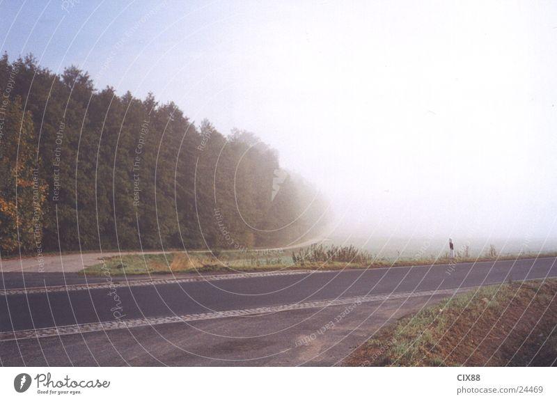 Morgennebel 3 Himmel Einsamkeit Straße Berge u. Gebirge Feld Nebel Verkehr Amerika