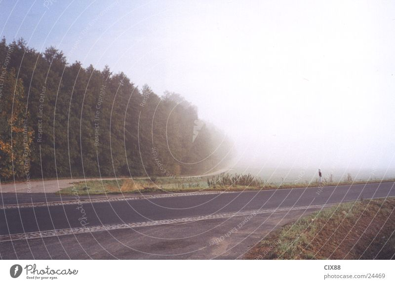 Morgennebel 3 Nebel Feld Einsamkeit Verkehr Straße Berge u. Gebirge Amerika Himmel