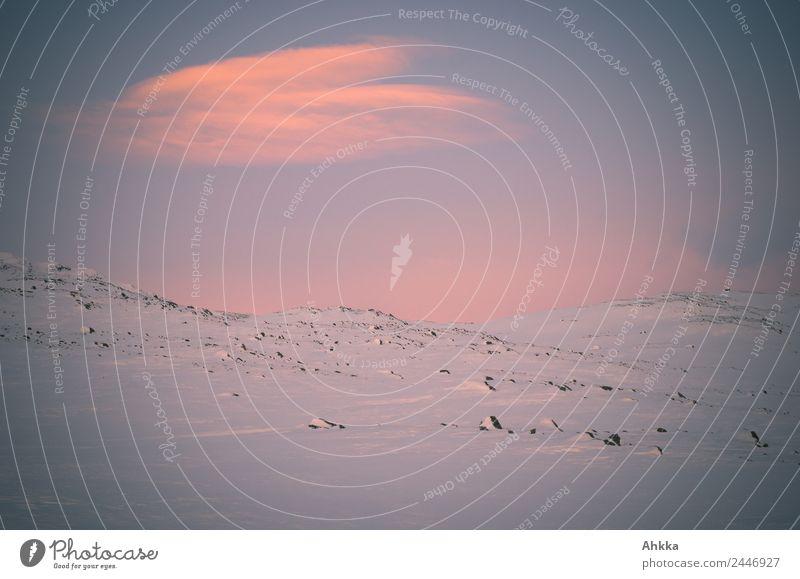 Winterhimmel in Norwegen harmonisch Sinnesorgane Erholung ruhig Meditation Ferien & Urlaub & Reisen Abenteuer Ferne Freiheit Schnee Winterurlaub Landschaft
