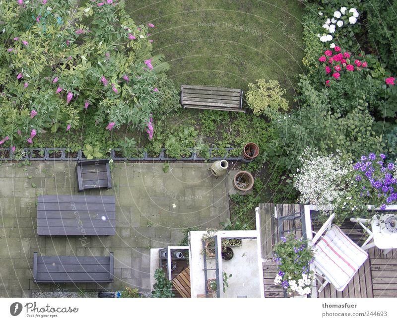 Abgrund Häusliches Leben Haus Garten Sessel Stuhl Tisch Balkon Sommer Pflanze Blume Gras Sträucher Rose Stadtzentrum Mehrfamilienhaus Terrasse Freundlichkeit