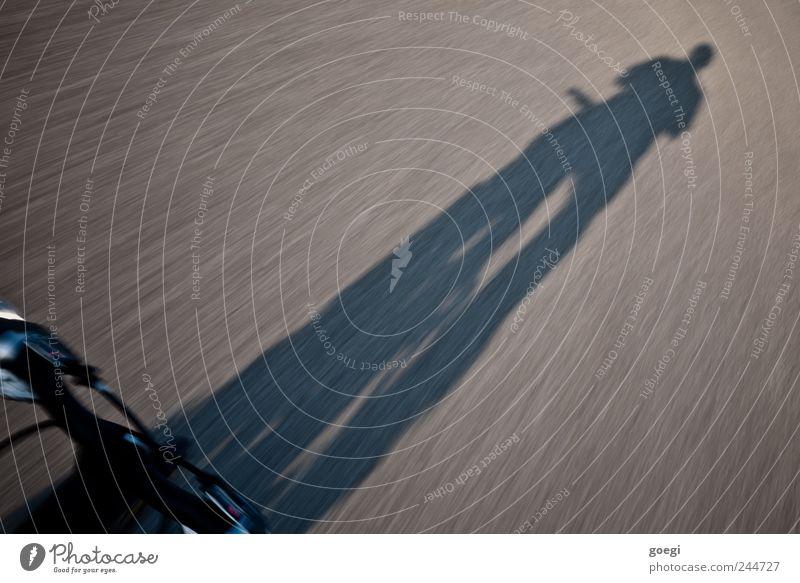 """""""life is like riding a bicycle. ... Straße Fahrrad Fahrradlenker Bewegung fahren Geschwindigkeit Mobilität Fahrradbremse Schatten Silhouette Farbfoto"""