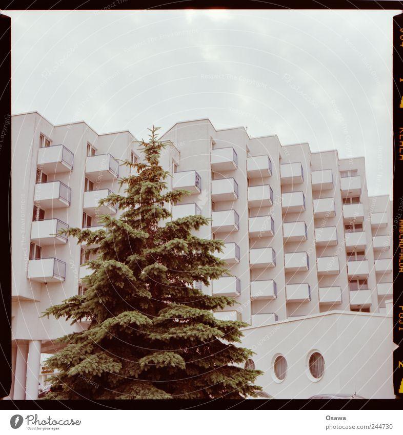 Hotel mit Nadelbaum Architektur Gebäude Bettenburg Fassade Balkon weiß Raster Strukturen & Formen Ordnung Reihe Himmel bedeckt Wolken Textfreiraum Menschenleer