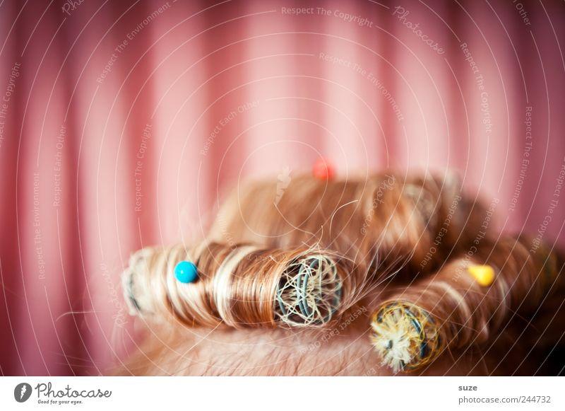 Verwicklung im Oberstübchen Mensch Frau schön Erwachsene feminin lustig Haare & Frisuren Stil Kopf rosa Behaarung Lifestyle Streifen retro Show Stoff