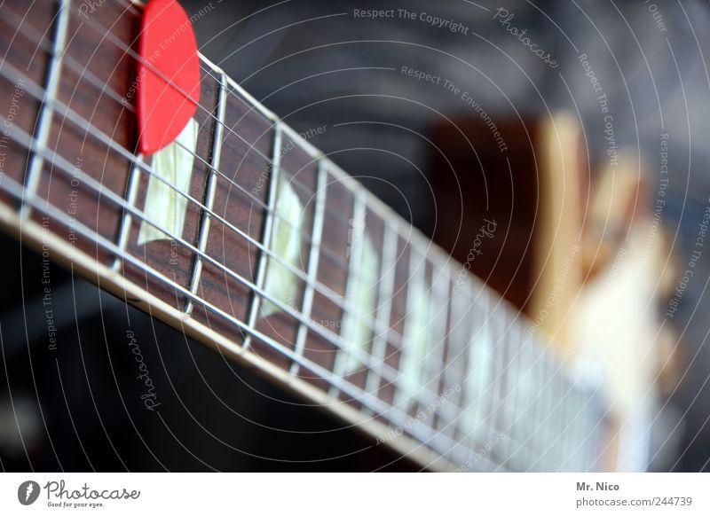 bassist gesucht Freizeit & Hobby Entertainment Musik Musik hören Konzert Open Air Bühne Musiker Gitarre rot Freude Saiteninstrumente Klang Elektrobass Rockmusik
