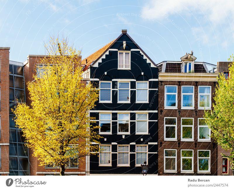 Schöne Architektur niederländischer Häuser in Amsterdam Stil Ferien & Urlaub & Reisen Tourismus Wohnung Haus Kultur Himmel Herbst Schönes Wetter Baum Kleinstadt