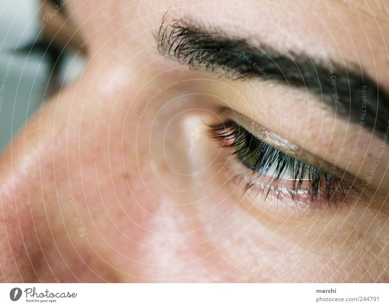 in seinen Augen... Mensch maskulin Mann Erwachsene Gesicht 1 Gefühle Wimpern Nahaufnahme Augenbraue Gesichtsausschnitt Blick Farbfoto