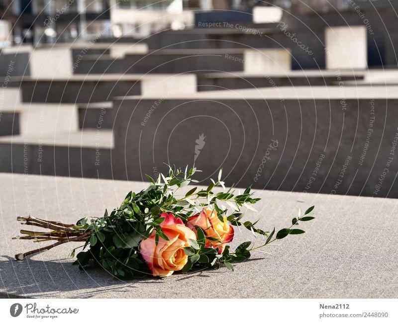 Krimi | ohne worte Kultur Stadt Hauptstadt Stadtzentrum Sehenswürdigkeit Wahrzeichen Denkmal eckig trist grau Berlin Massenmord Holocaustgedenkstätte Beton