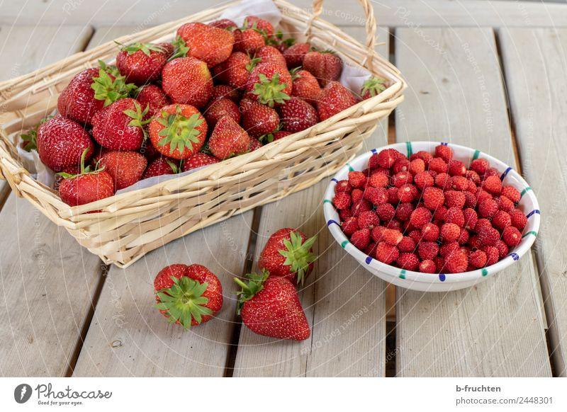Erdbeer-Saison Lebensmittel Frucht Bioprodukte Essen frisch Gesundheit saftig rot genießen Wald-Erdbeere Erdbeeren fruchtig Tisch Korb Schalen & Schüsseln Ernte