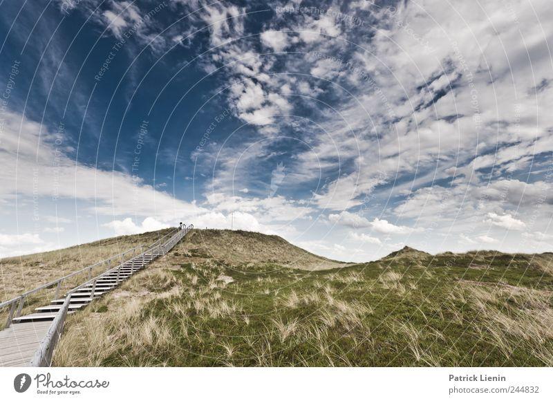 I´ve been everywhere Himmel Natur Pflanze Sommer Ferien & Urlaub & Reisen Strand Meer Wolken Einsamkeit Freiheit Umwelt Landschaft Küste Wetter Wellen