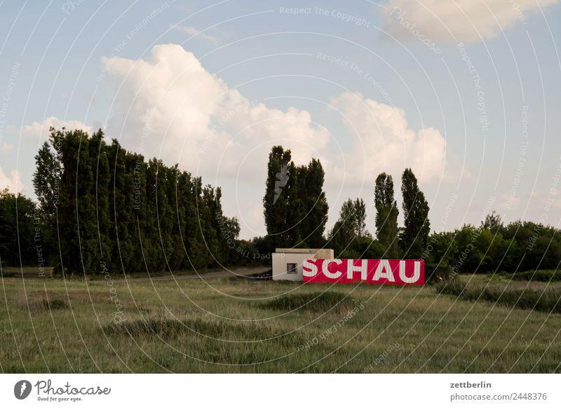 SCHAU Berlin Ferne Flughafen Flugplatz Himmel Himmel (Jenseits) Horizont Menschenleer Skyline Sommer Berlin-Tempelhof Textfreiraum Wolken Container Wort