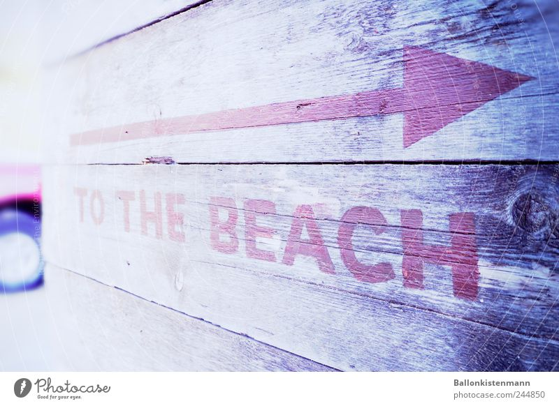 Bleach the beach Strand Schlagwort Schilder & Markierungen Hinweisschild Pfeil Typographie Sommerurlaub Richtung Englisch Badeurlaub Großbuchstabe