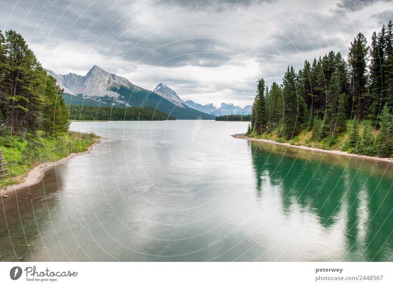 Maligne Lake, Jasper National Park, Alberta, Canada Natur Ferien & Urlaub & Reisen Sommer grün Wolken Wald Berge u. Gebirge See Schwimmen & Baden grau Ausflug
