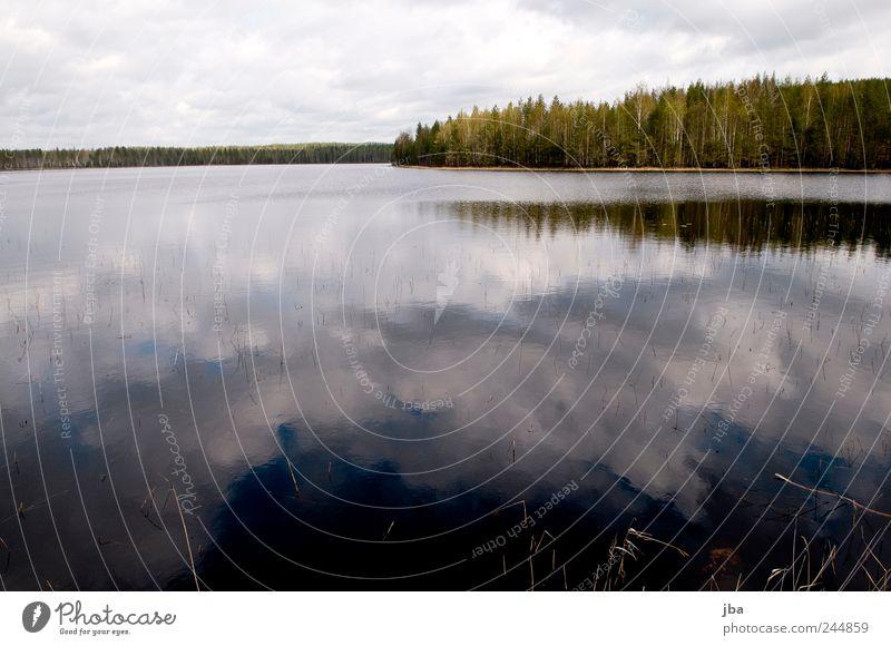 Wolkenspiegelung Himmel Natur blau Wasser weiß Ferien & Urlaub & Reisen Wolken Wald Landschaft Küste See Ausflug Halm Glätte Finnland
